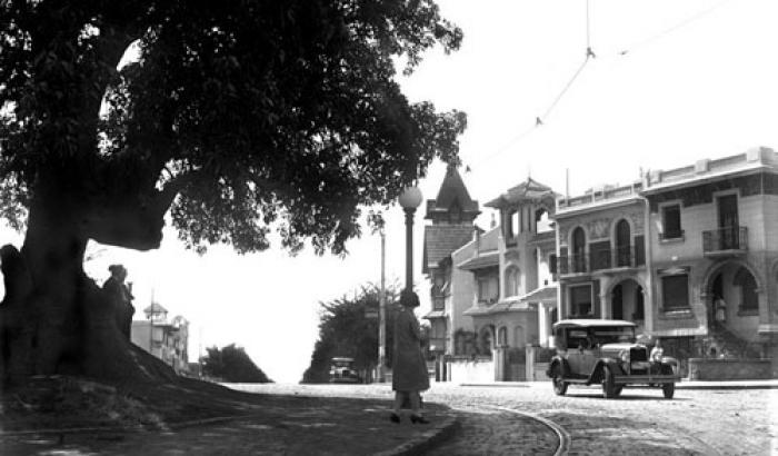 Ombú de Br. España. Año 1929 (Foto 5168 FMH.CMDF.IMM.UY)